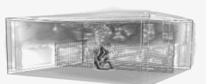 Èxit del Curs de Simulació FDS i Pyrosim